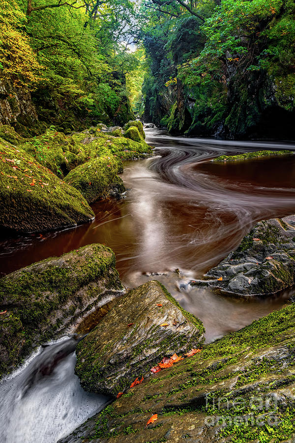 Fairy Glen Gorge by Adrian Evans