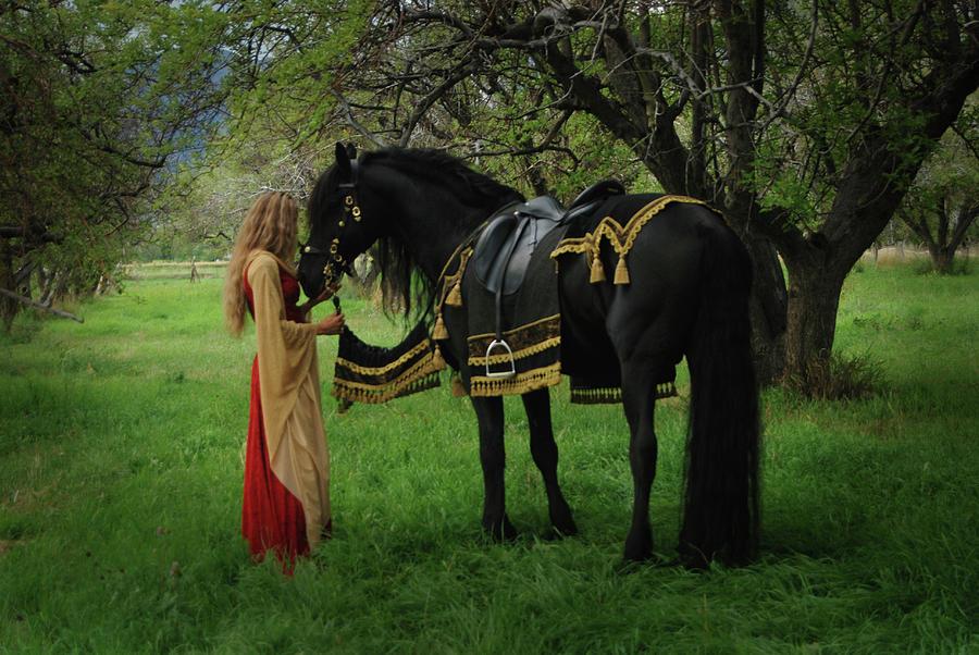 Fairytale  by Carol Whitaker