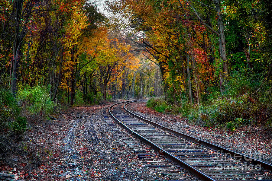 Fall Around The Bend by Mark Miller