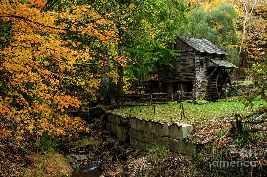 Fall at Cuttalossa Farm by Debra Fedchin