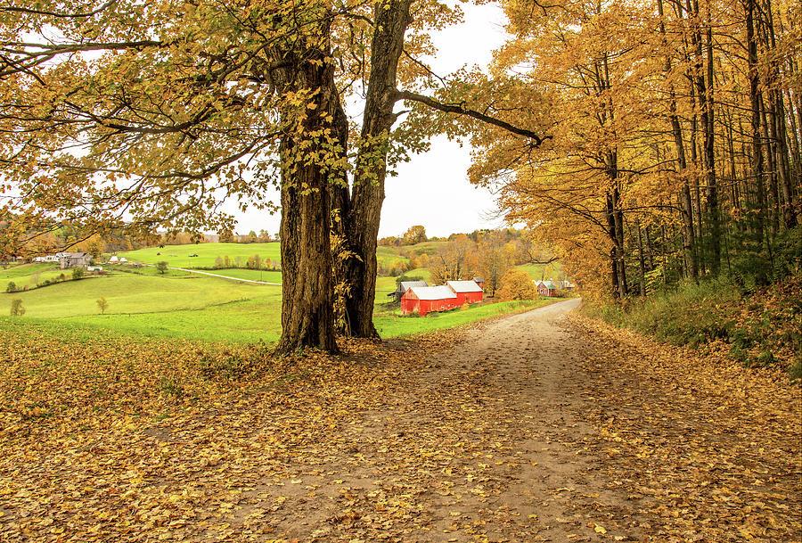 Fall at the Jenne Farm by Gordon Ripley