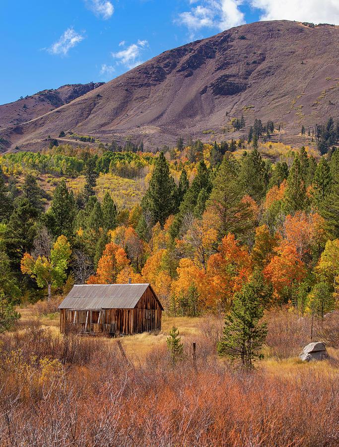 Cabin Photograph - Fall Cabin - 2 by Jonathan Hansen