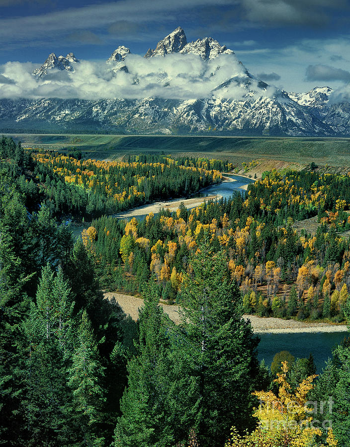 fall color along the snake river grand tetons np wyoming by Dave Welling