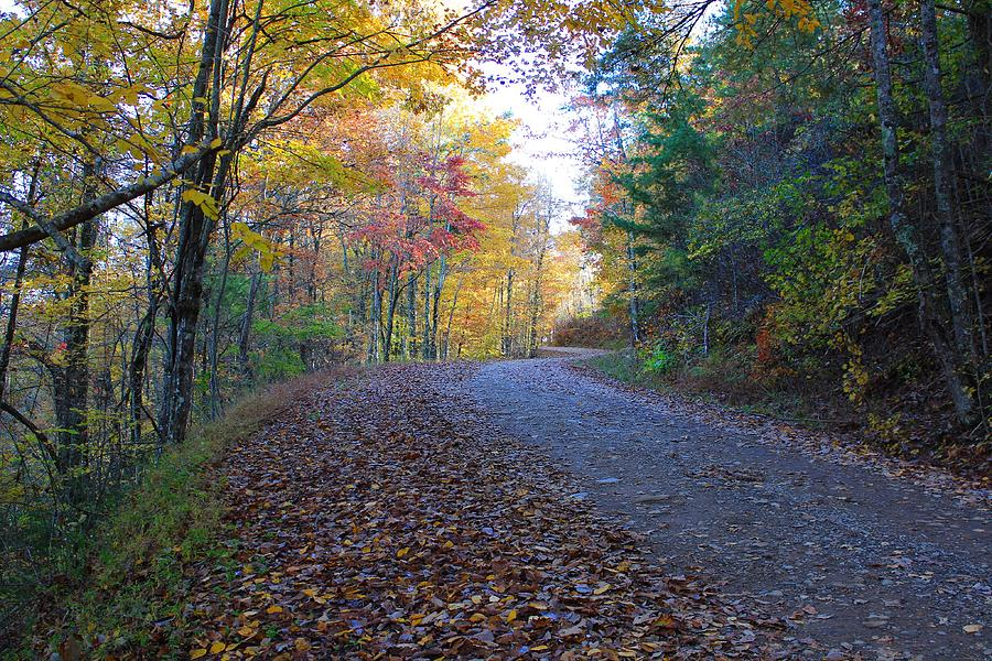 Fall Colors and Backroads by Richard Parks