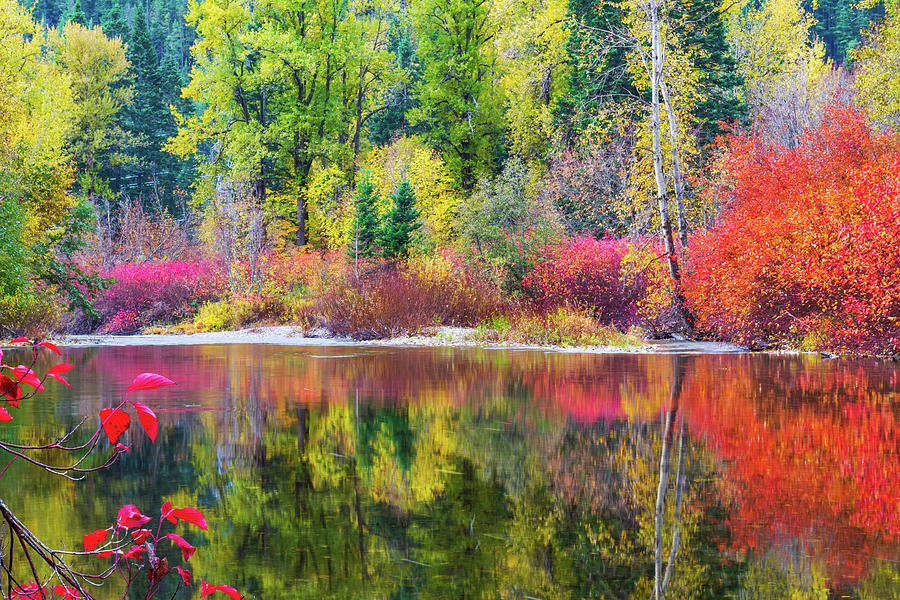Fall colors in central Cascade by Michael Lee