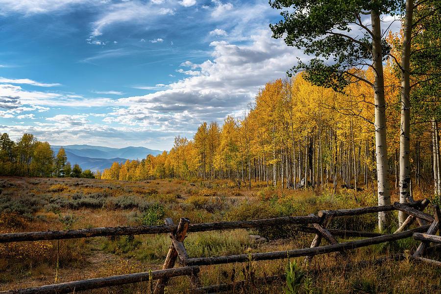Fall Colors in Utah by Michael Ash