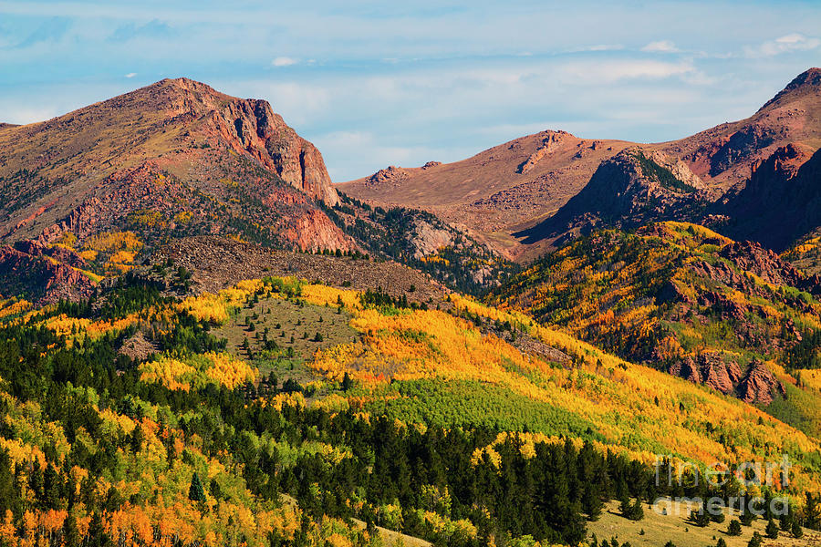 Fall Colors On The North Face Of Pikes Peak Photograph