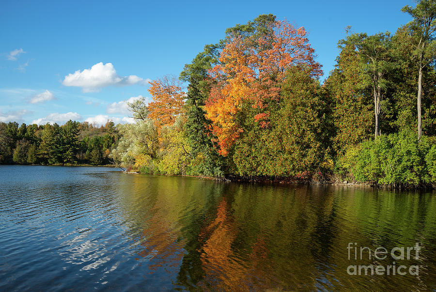 Fall colors reflection by Les Palenik