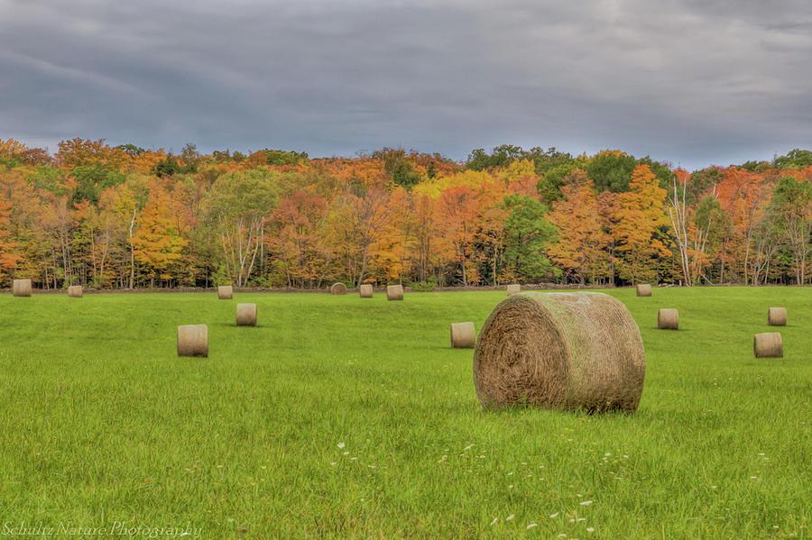 Fall Field by Paul Schultz