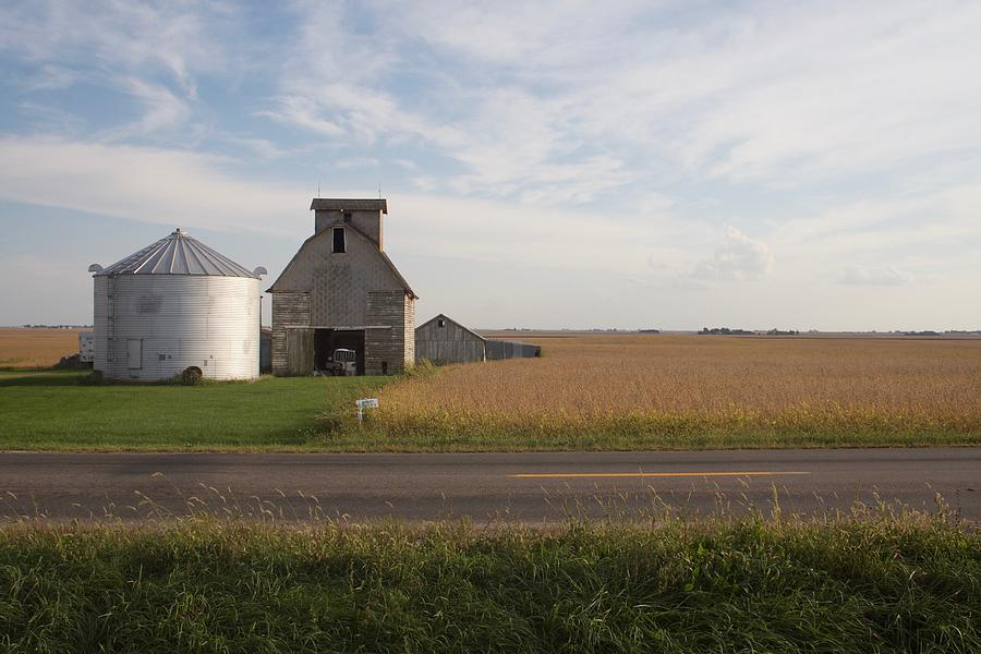 Fall Flats Roadway by Dylan Punke