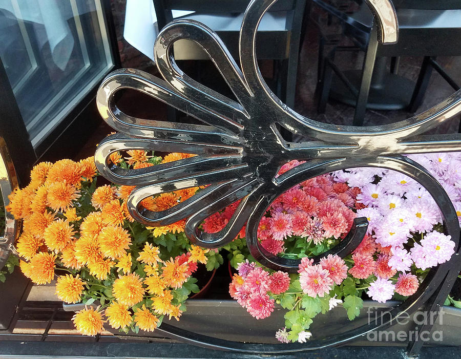 Fall Flowers 300 by Sharon Williams Eng