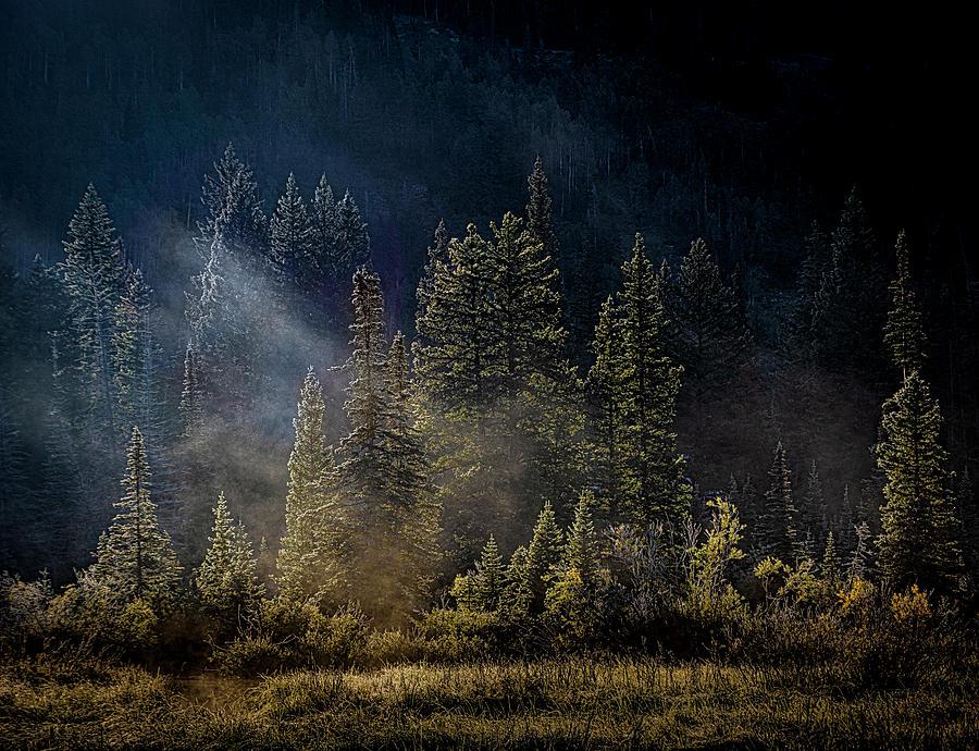 Fall Fog by Paul Bartell