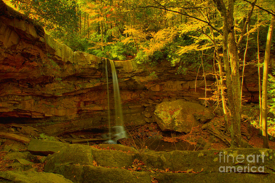 Fall Foliage A Cucumber Falls Canyon by Adam Jewell