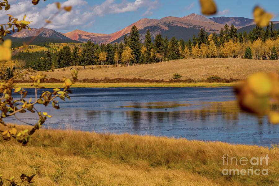 Fall foliage at the pass by Annerose Walz