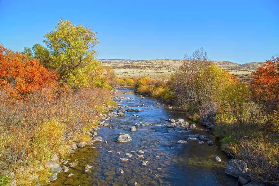 Fall Foliage in Idaho by Dart and Suze Humeston