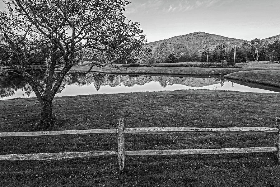 Fall Foliage Reflection Weston VT Tree Black and White by Toby McGuire