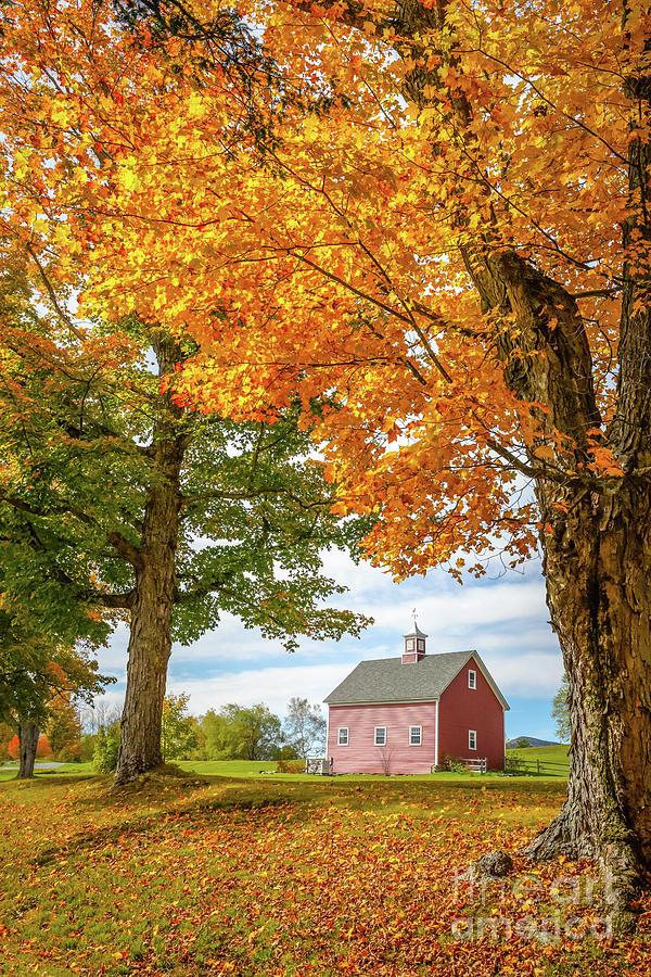 Fall Foliage Season on the Farm Grantham New Hampshire by Edward Fielding