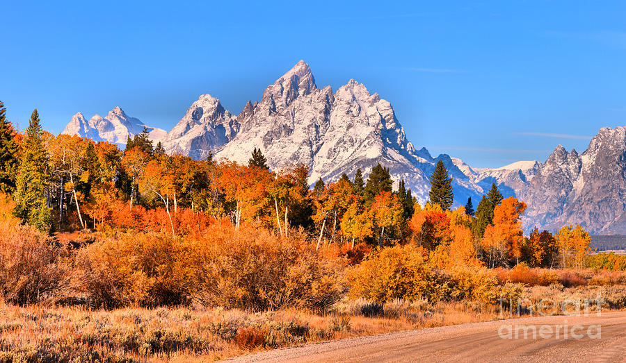 Fall Foliage Under The Cathedral Group by Adam Jewell