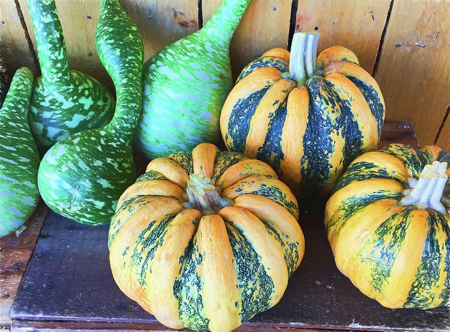 Gourd Photograph - Fall Harvest by Lorraine Baum