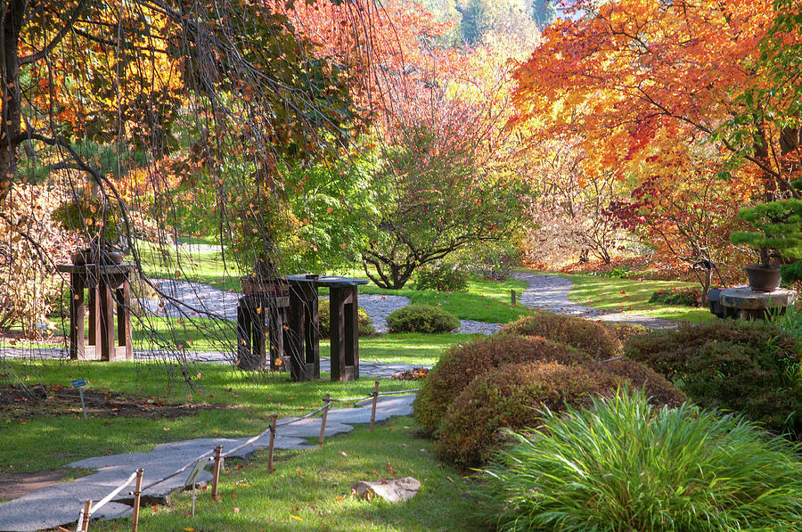 Fall in Japanese Garden 3 by Jenny Rainbow