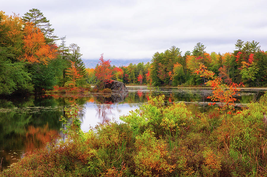 Fall in NH by Robert Clifford