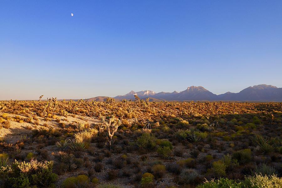 Fall in the high desert by Sagittarius Viking