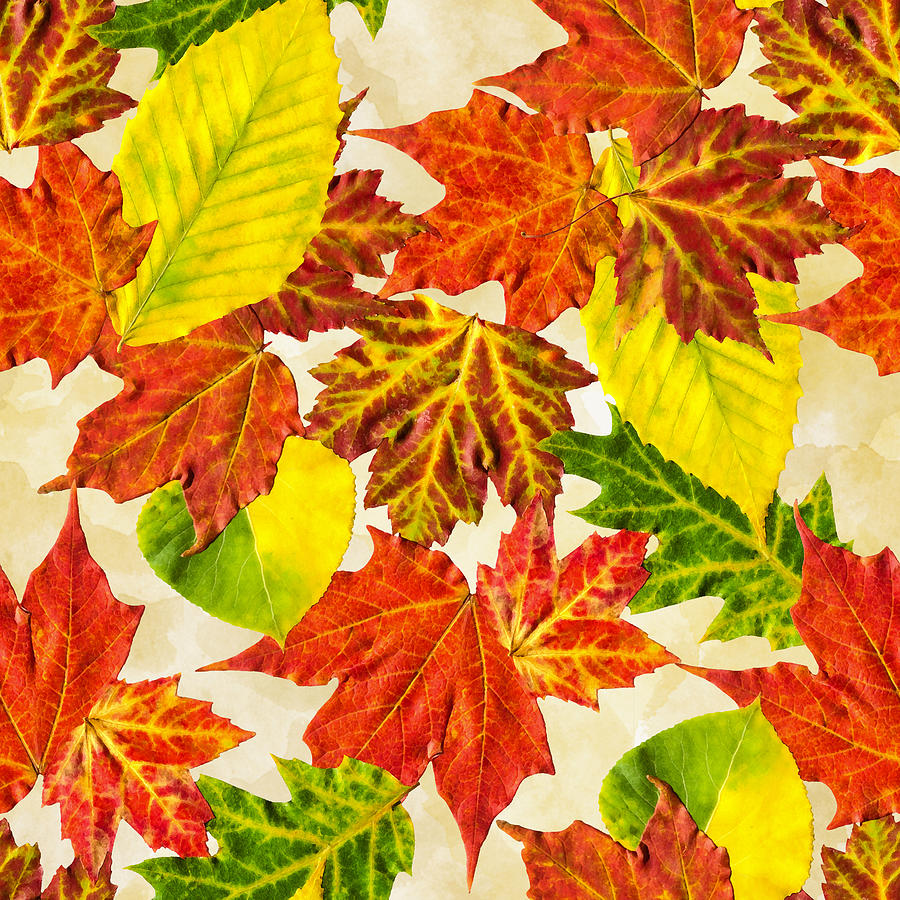 - Fall Leaves Pattern Mixed Media By Christina Rollo