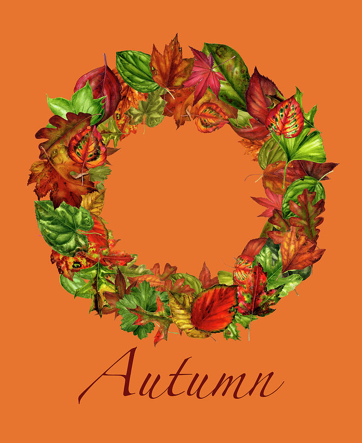 Botanical Painting - Fall Leaves Wreath by Mindy Lighthipe- Artist Llc