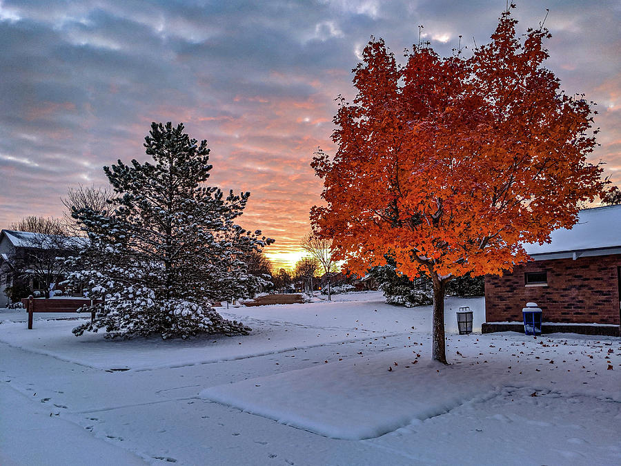 Fall Meets Winter by Randy Scherkenbach