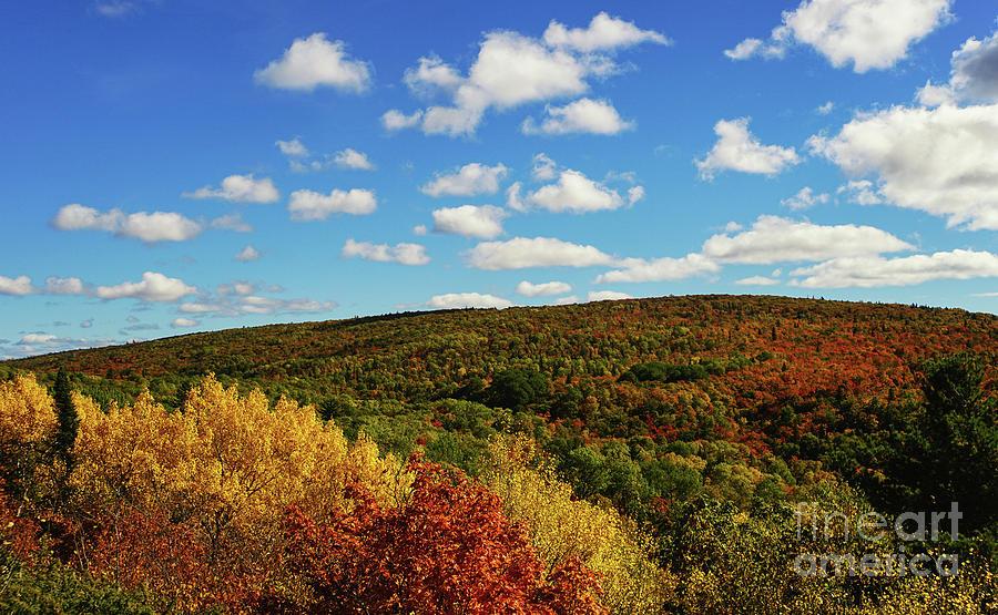 Fall On Brockway Mountain Photograph
