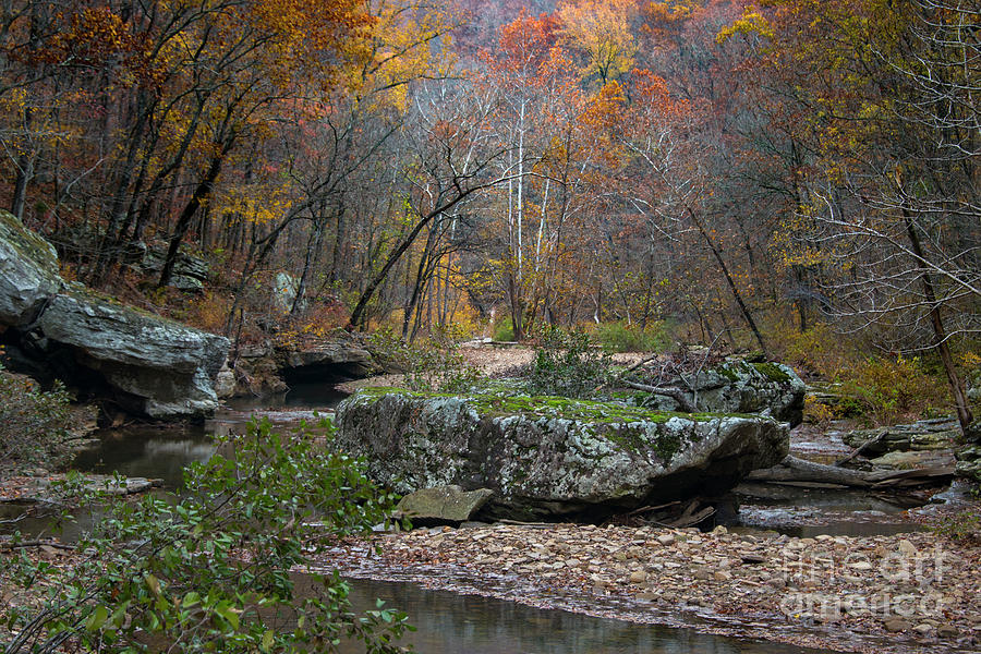 Fall Photograph - Fall on the Kings River by Joe Sparks