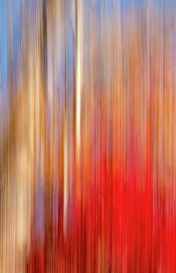 Fall Scene Abstract by Carolyn Derstine