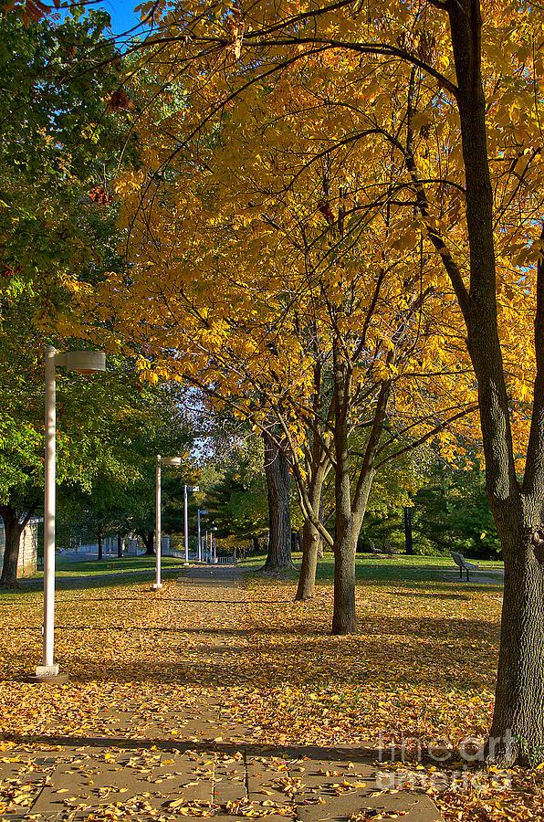 Fall Sidewalk by Steve Edwards
