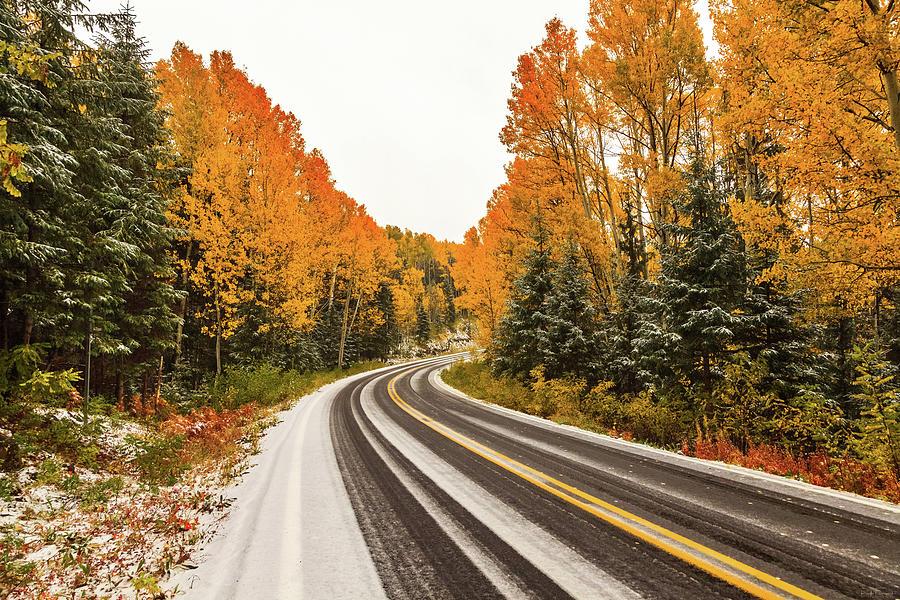 Fall Snow by Rick Furmanek
