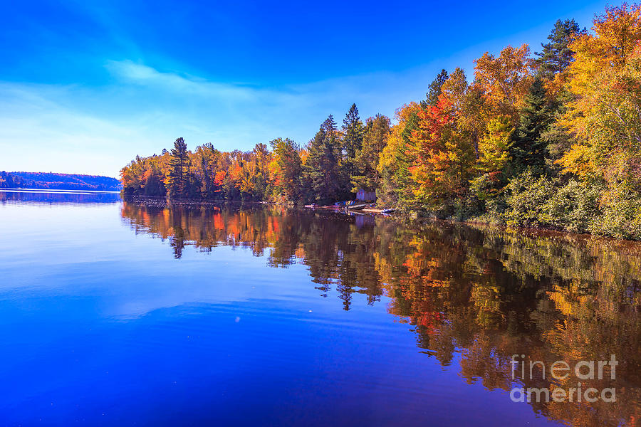 Pond Photograph - Fall Trees With Reflection by Imran Ashraf