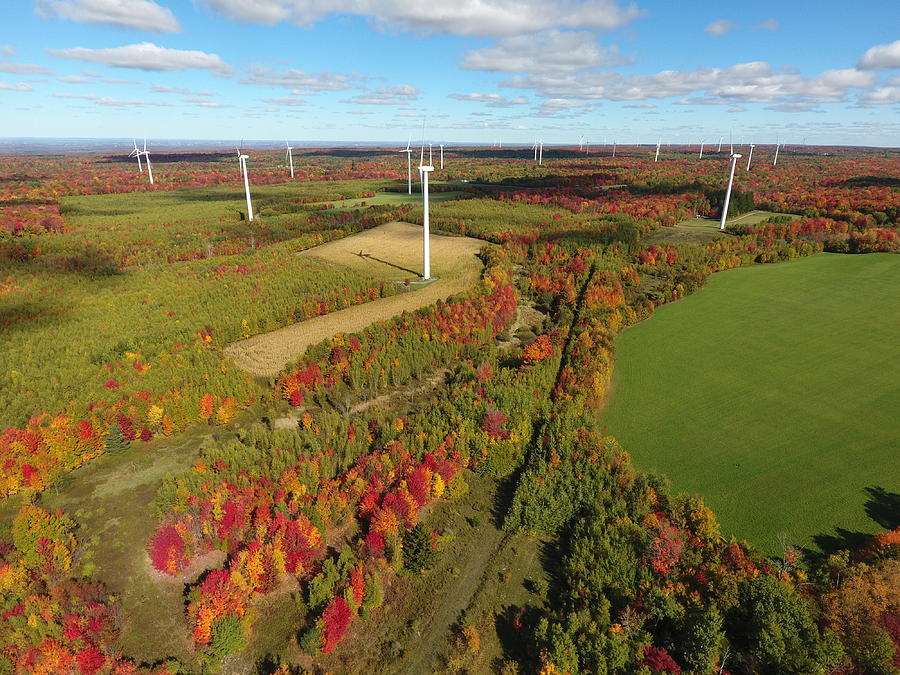 Fall Wind Turbines Photograph by Jedidiah Thone