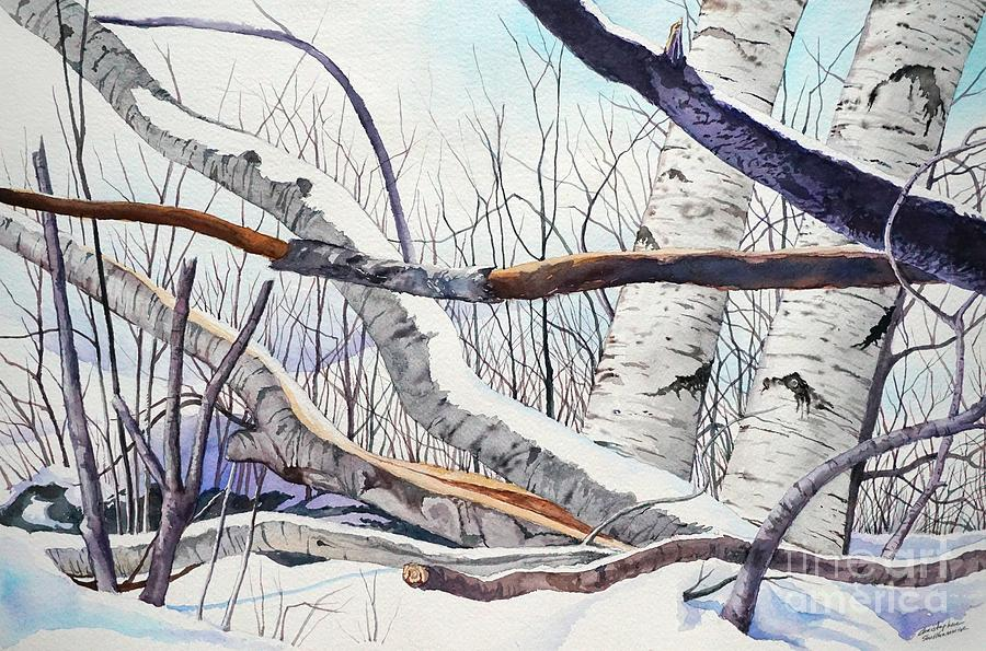 Fallen Birch trees after the snowstorm in watercolor by Christopher Shellhammer