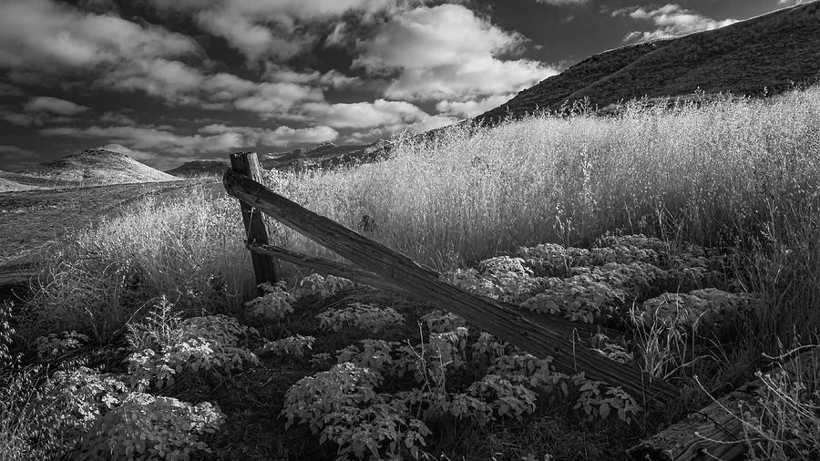 Fallen Fence  by Joseph Smith