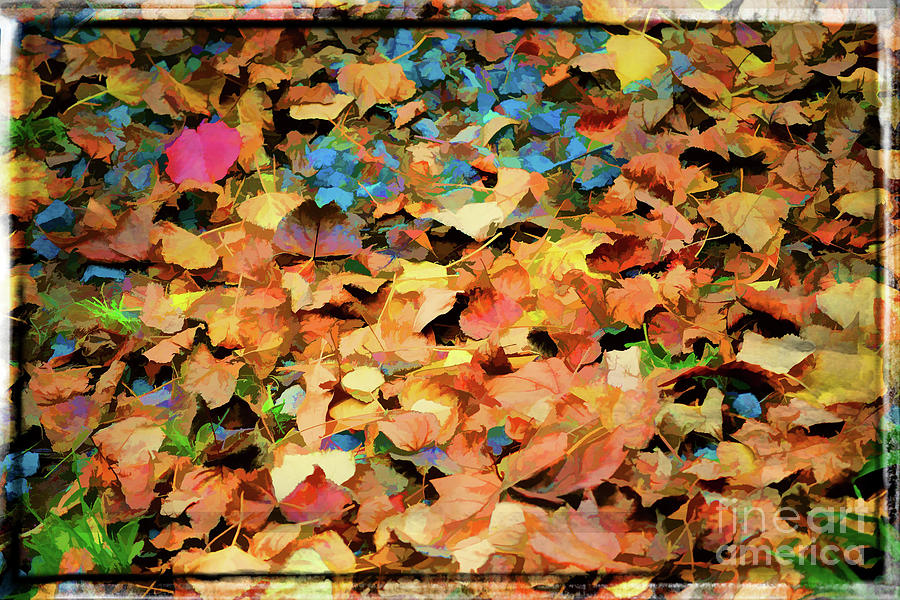 Fallen Leaves by Marty Faulkner