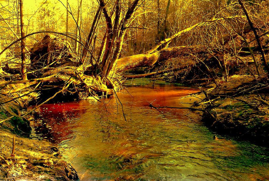 Fallen tree by Henryk Gorecki