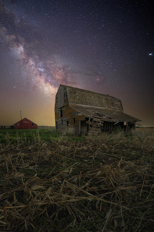 Decay Photograph - Falling Down  by Aaron J Groen