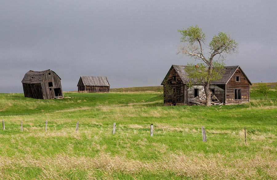 Falling Farmhouse and Barns by Denise Bush