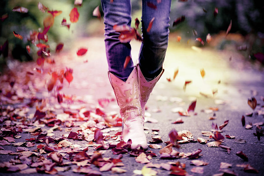 Falling Leaves Photograph by Sasha Bell