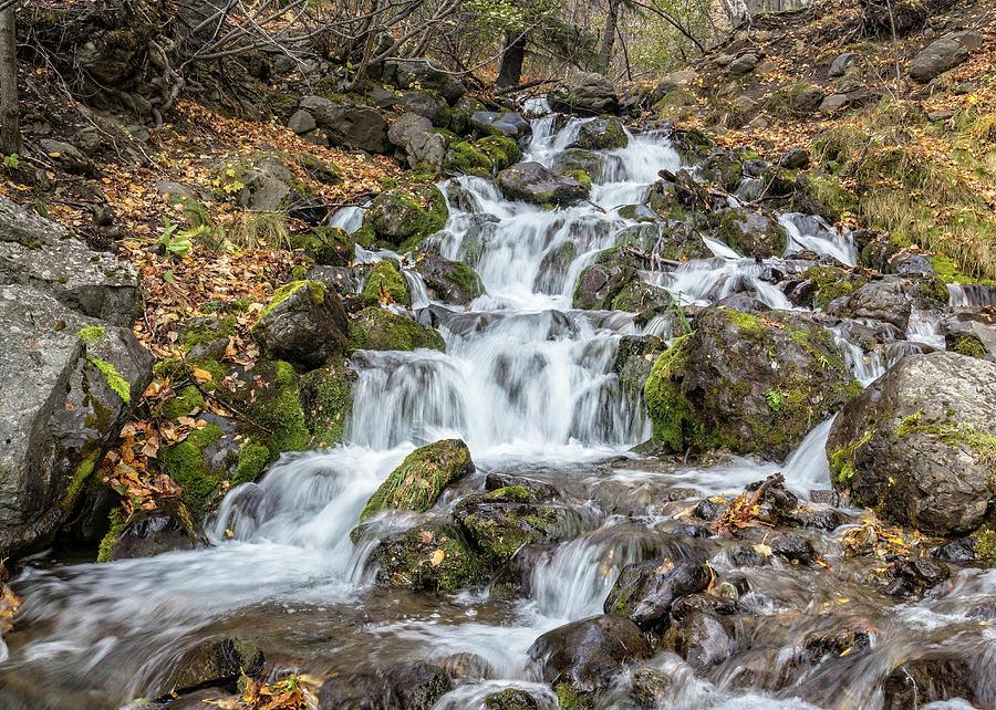 Falls Creek by James Capo