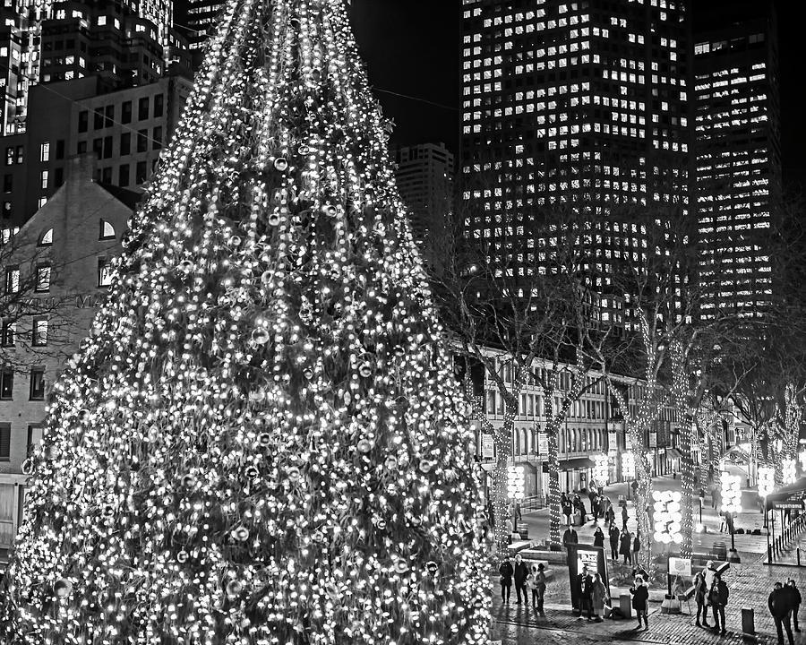 Christmas In Boston Massachusetts.Faneuil Hall Christmas Tree 2018 Boston Ma Black And White