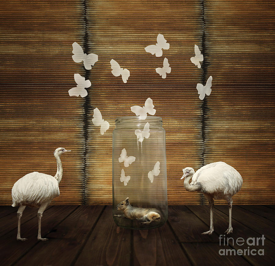 Play Photograph - Fantasy Artistic Composition by Valentina Photos