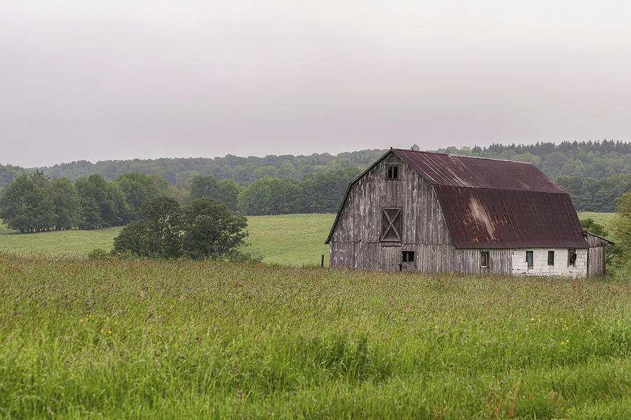 Farm Country by Rod Best
