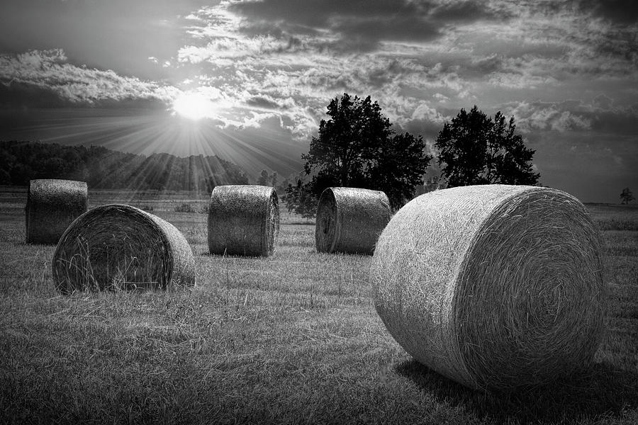 Farm Field with Hay Bales at Sunrise in Black and White by Randall Nyhof