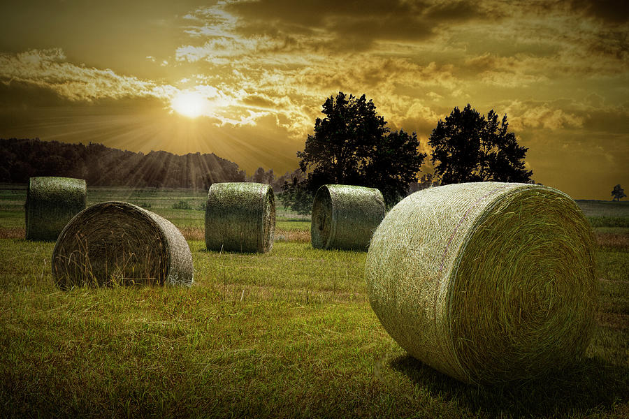 Farm Field with Hay Bales at Sunrise in West Michigan by Randall Nyhof