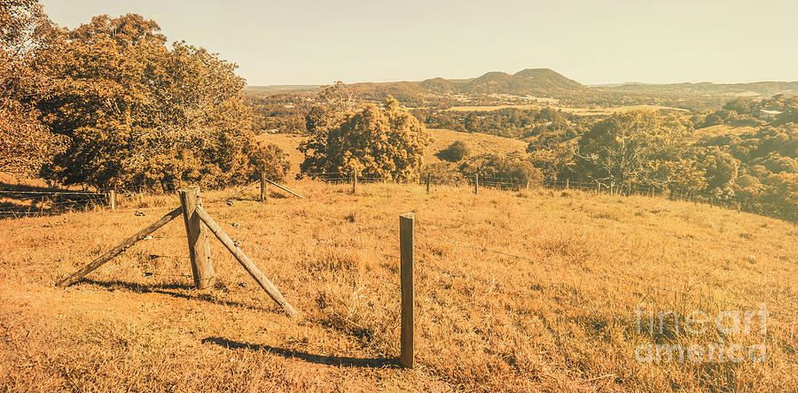 Country Photograph - Farm Fields Of Eumundi, Sunshine Coast by Jorgo Photography - Wall Art Gallery